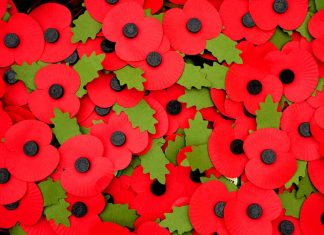 Photograph of red paper poppies. Brits wear them in November to commemorate soldiers who have served and perished in wars since World War I.