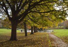 Photo of Abington Park, Northampton. Photo credit: Northampton Borough Council