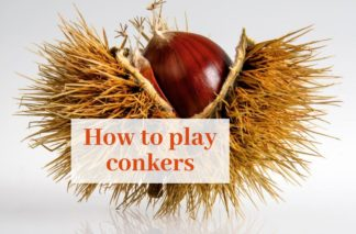 "Picture of a conker with ""how to play conkers"" written on it"